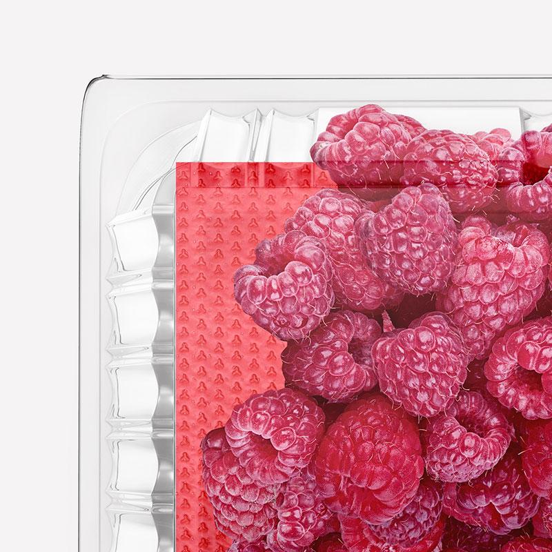 Fruitbond, assorbenti per la conservazione della frutta - MAGIC SRL